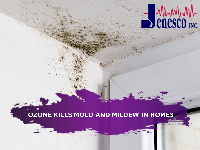 Ozone Kills Mold and Mildew in Homes